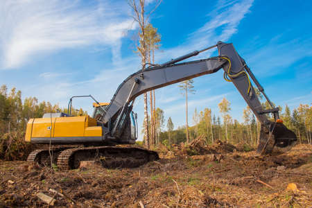 A large excavator works in a forest area. Construction work at the place where the forest grew.