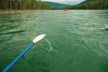 Paddle on the background of green water.