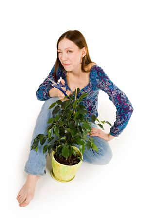 floriculturist: Woman sitting on the floor cutting plant with blue scissors