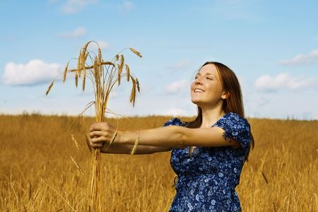 young woman in the field holding bundle of the golden wheat ears  photo