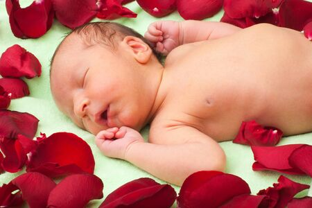 Baby sleeping in flowers with many rose petals around Stock Photo - 7708834