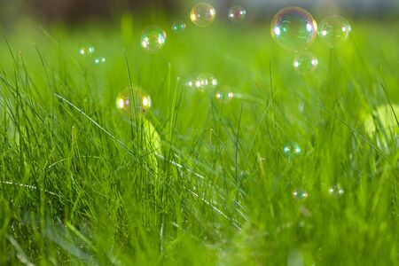 Soap bubbles on fresh green grass photo