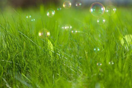 Soap bubbles on fresh green grass Stock Photo - 9486983