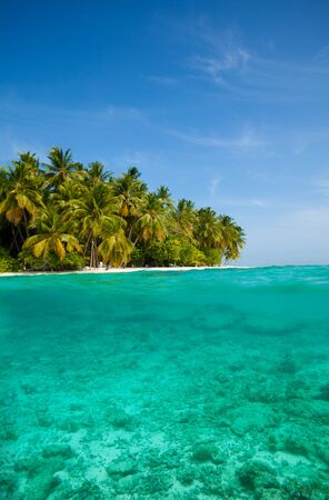 Tropical island with the half underwater view with sea bed Stock Photo - 11753880