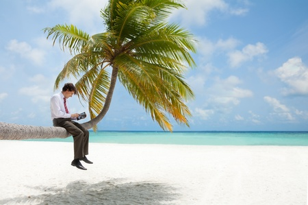 Office manager with tablet pc sitting on palm tree on the Maldivian beach