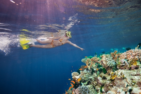 Woman scuba diver pointing to beautiful corals and fishes underwater
