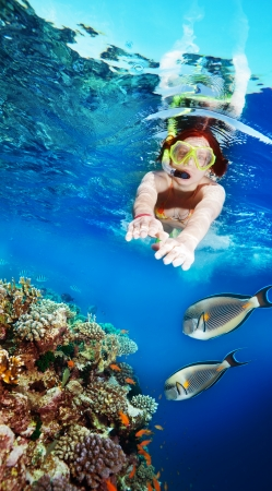 woman diving: Happy female woman snorkeler diving among corals and fishes