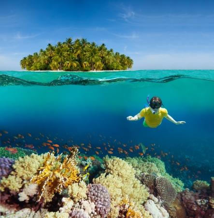Koralen, duiker en Palm Island - de helft onder water shoot