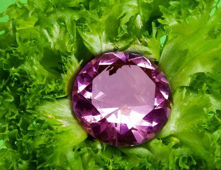 Fresh jewel - inside the lots of fresh green leaves Stock Photo - 13948863
