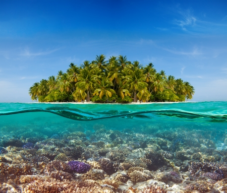 Coral reef and the Island - half underwater shoot Stock Photo - 15673180