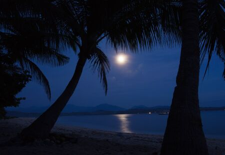 Big full bright moon lighting the beach photo