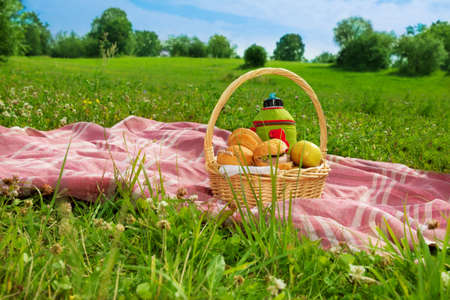 thermos: holiday picnic on green grass in park Stock Photo