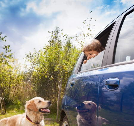 interested baby: kid in the car and dog outside look at each other