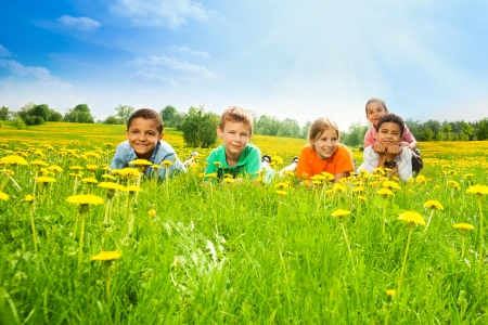early summer: Five happy kids laying in the dandelion field in the sunny early summer day