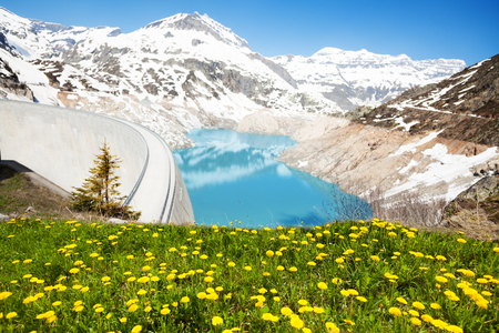 Spring dandelion flowers and Emosson hydroelectric Dam near village of Chatelard, Swiss on the border with France Stok Fotoğraf
