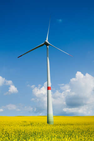 Close shoot wind turbine in the yellow flowers meadow on clean sky sunny day photo