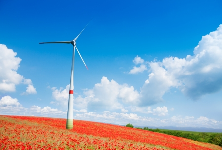 One wind electric turbine mill in the field with red poppy flowers field on bright sunny day photo