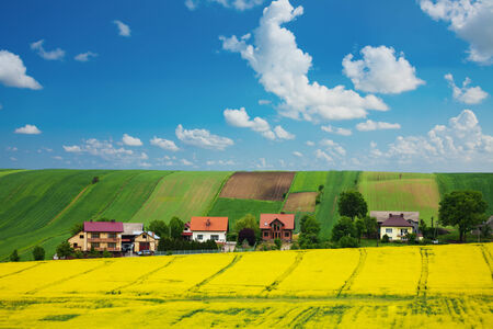filed: Rapeseed field and houses on the hill in Slovakia village Stock Photo