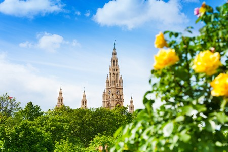weihnachtsmarkt: Vienna town hall from the park and yellow roses in the Volksgarten park Stock Photo