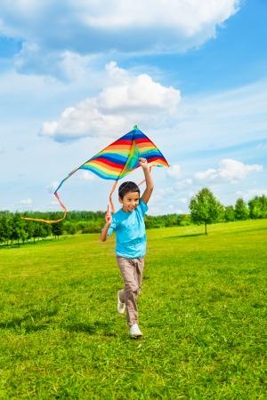 papalote: Poco 6 años del muchacho en camisa azul corriendo con la cometa en el campo en día de verano en el parque Foto de archivo