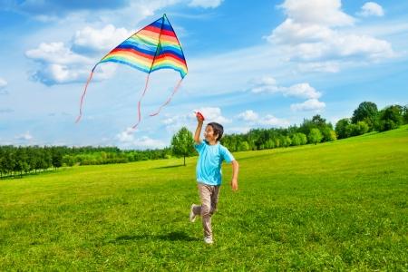 Kleine jongen in blauw shirt lopen met vlieger in het veld op de zomerdag in het park
