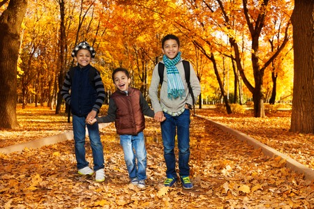 Three happy, laughing black boys, happy brothers 5-10 years old going together holding hands in the park wearing backpacks and autumn clothes in maple and oak park with lots of autumn red and orange leaves Stock Photo - 24472402