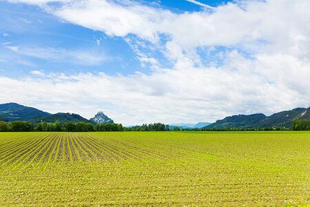 Hochosterwitz fields around the castle area, spring, Austria photo