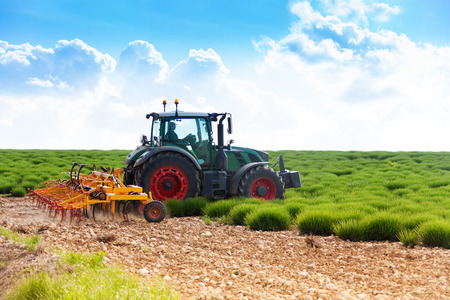 hoe: Tractor cultivating land with lavender fields in summer Stock Photo