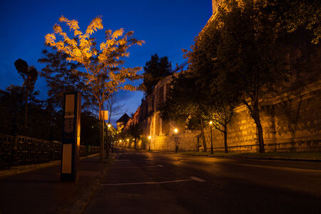 Palota út under Buda Castle and National Library with street lights at night in Budapest, Hungary photo