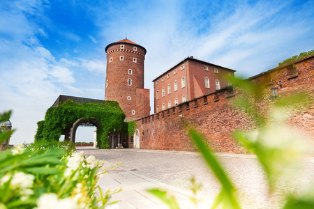 Gates of Wawel Royal Castle  (Zamek Krolewski na Wawelu)