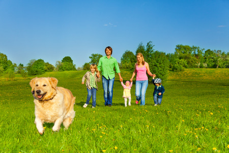 multiple family: Happy family walks with running dog in park in summer Stock Photo