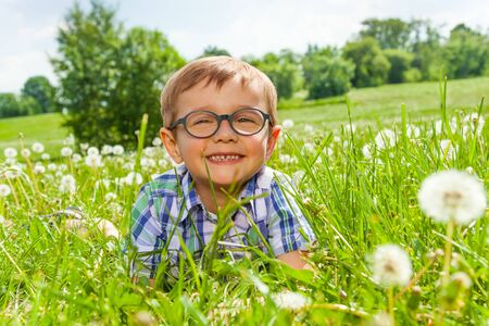 Smiling little boy lays on a grass photo