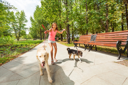 Teenage girl with running away dogs photo