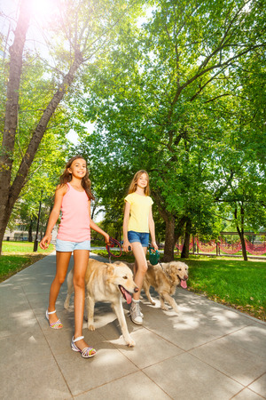cute teen girl: Walking dogs outside in park alle Stock Photo