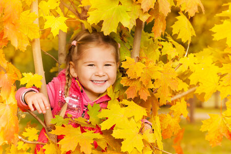 kids playing outside: Happy girl hides in autumn maple leaves during day