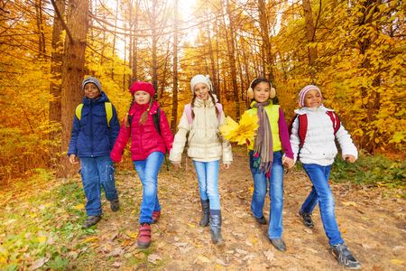 walk in: Kids with yellow maple leaves bunch walk in forest