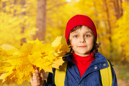 close up view: Boys close up view with yellow maple leaves Stock Photo