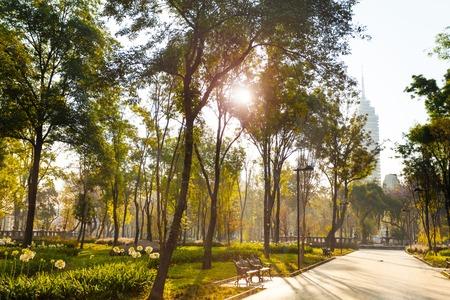 メキシコ ・ シティの中央アラメダ公園朝 写真素材