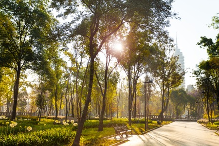 Central Alameda park 's morgens in Mexico-stad Stockfoto