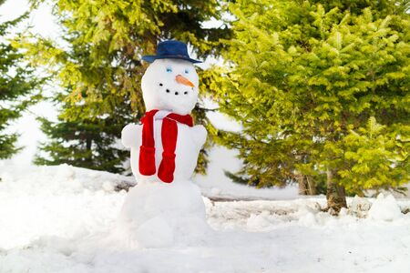 red scarf: Snowman with blue hat and red scarf he forest