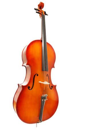 violoncello: Violoncello on white background in full length