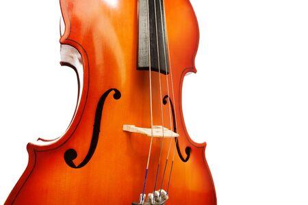 violoncello: Violoncello fragment with bridge, body and F-hole