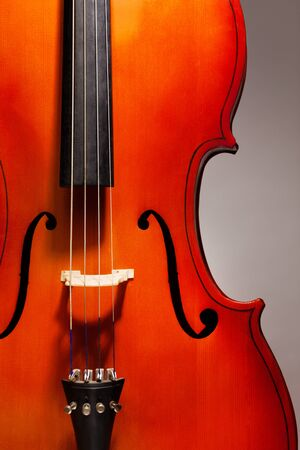 fingerboard: Close-up violoncello in vertical position Stock Photo