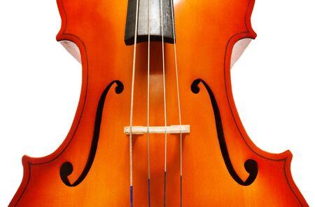 violoncello: Violoncello body with bridge and F-holes