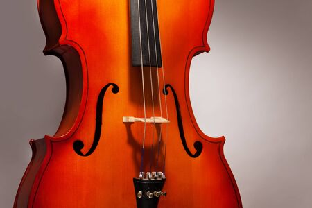 violoncello: Fragment of violoncello in vertical position on the grey background