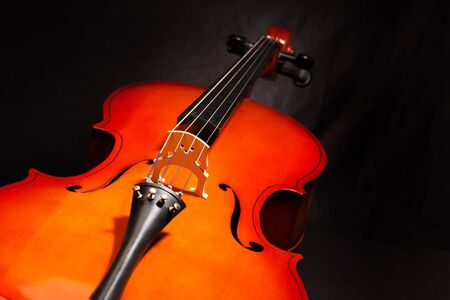 violoncello: Violoncello body view in vertical position on the black background Stock Photo
