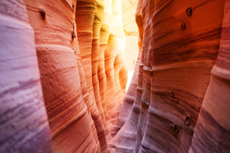 Columns and wave formations in Zebra Slot Canyon Utah, USA natural shapes of sandstone formed by little creek