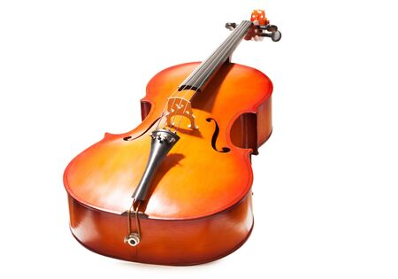 violoncello: Violoncello view in full length on the white background
