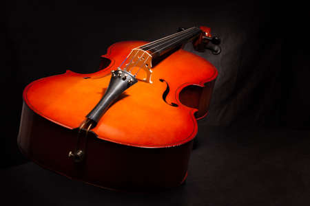 violoncello: Beautiful violoncello body view in vertical position on the black background