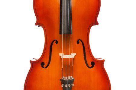 violoncello: Beautiful violoncello body in vertical position on the white background